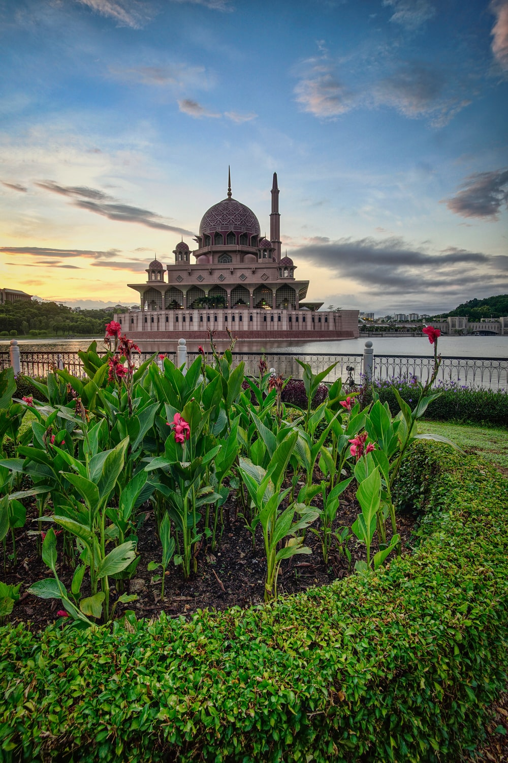 brown dome building viewing pink flower garden under blue and white skies