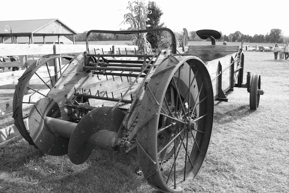 grayscale photo of carriage