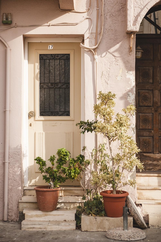 plants in front of door