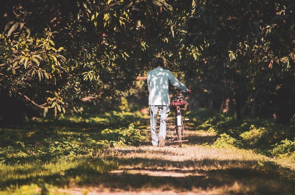 person pushing bicycle in pathway during daytime