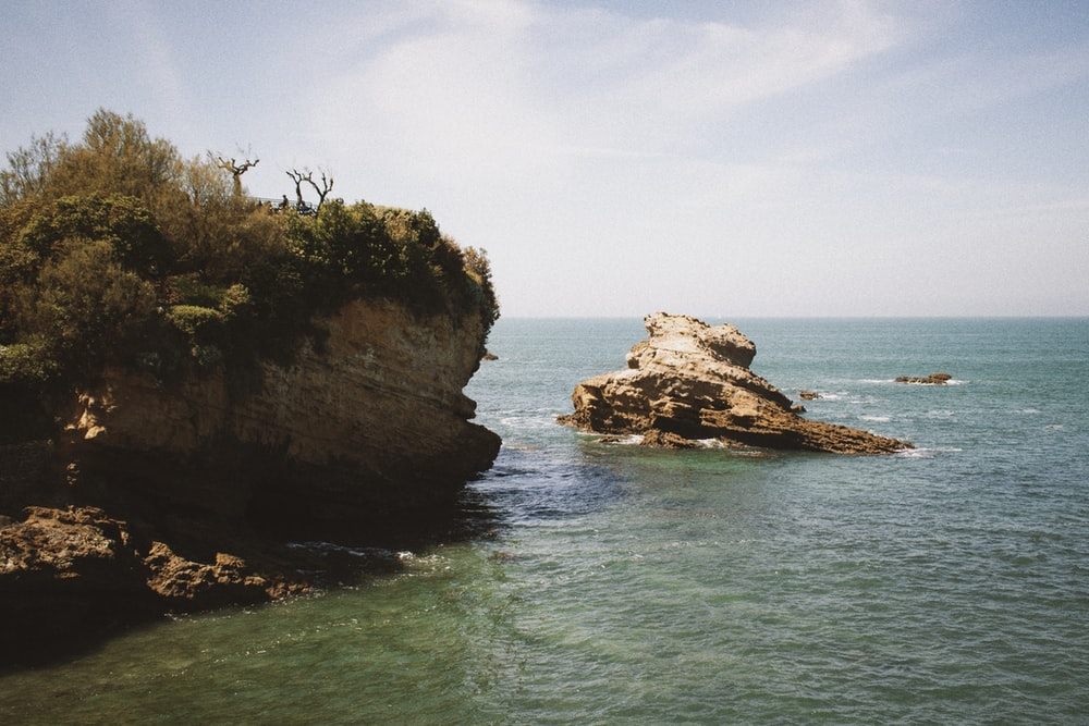 brown and green cliff in front of body of water