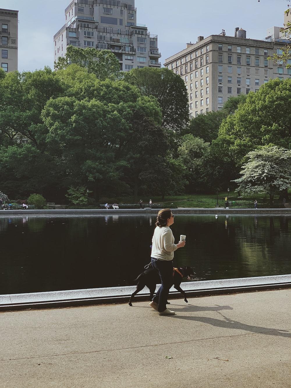 woman beside dog walking at park