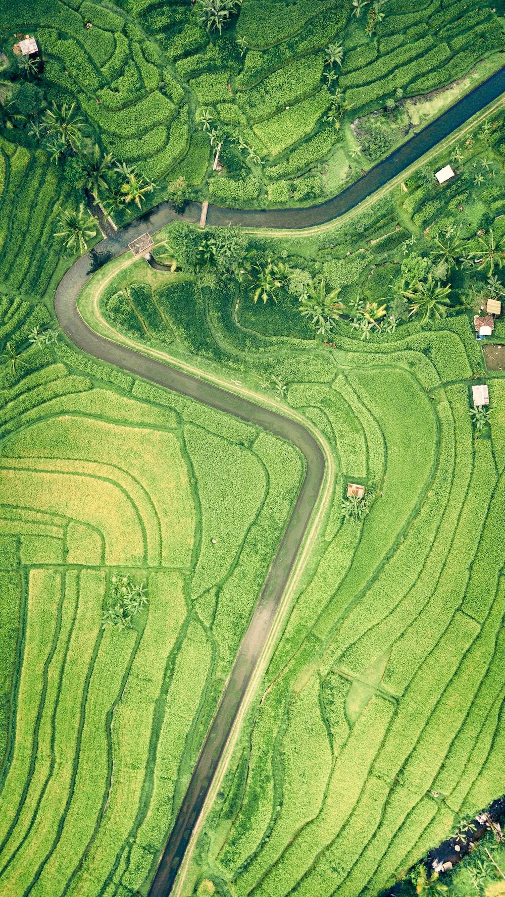 aerial photo of roa