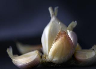 onion club