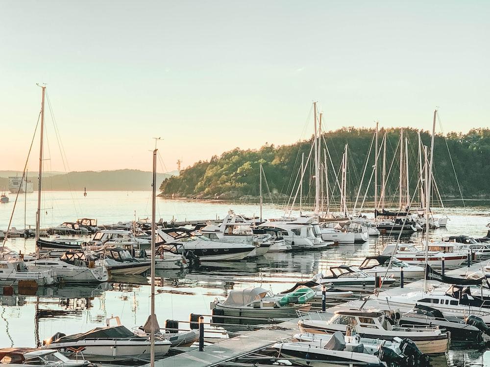 motorboats parked beside dock during daytime