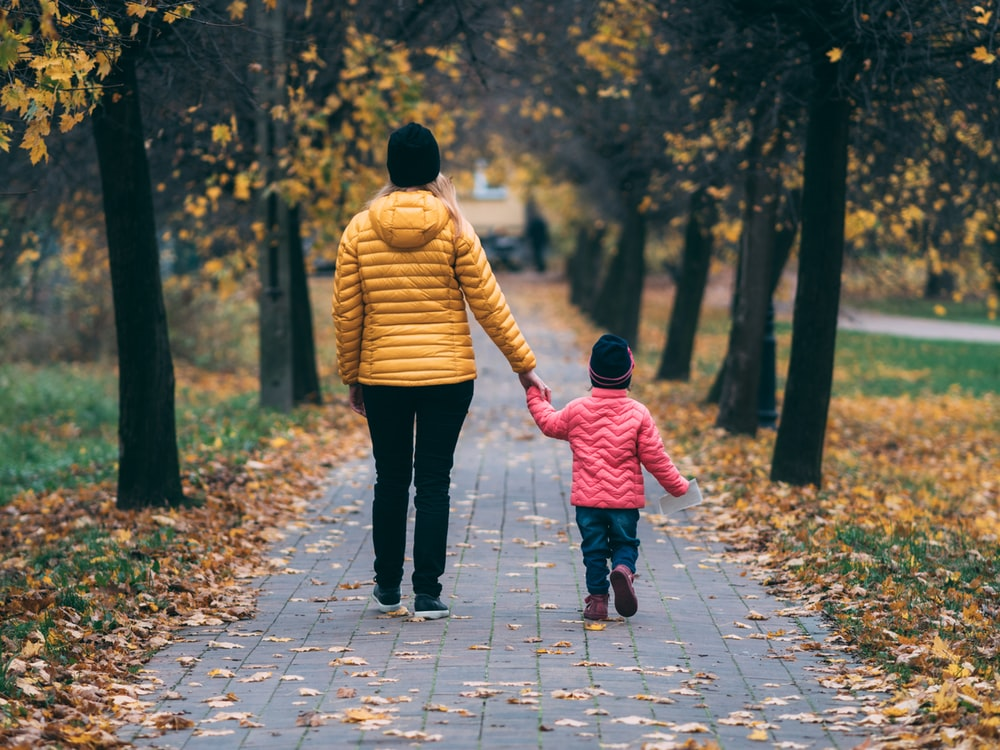person holding child walking on pathway