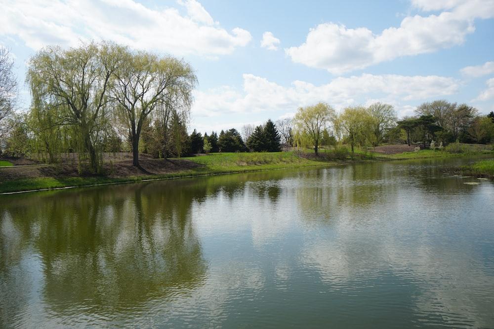 empty lake during daytime