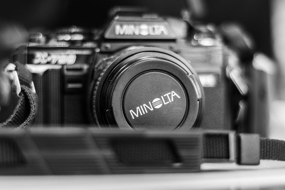 Nikon D5600 Pictures | Download Free Images on Unsplash