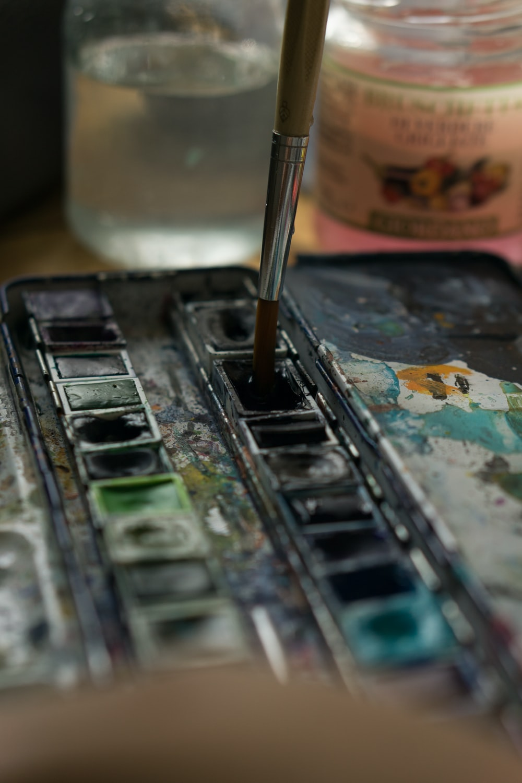 paint brush in case
