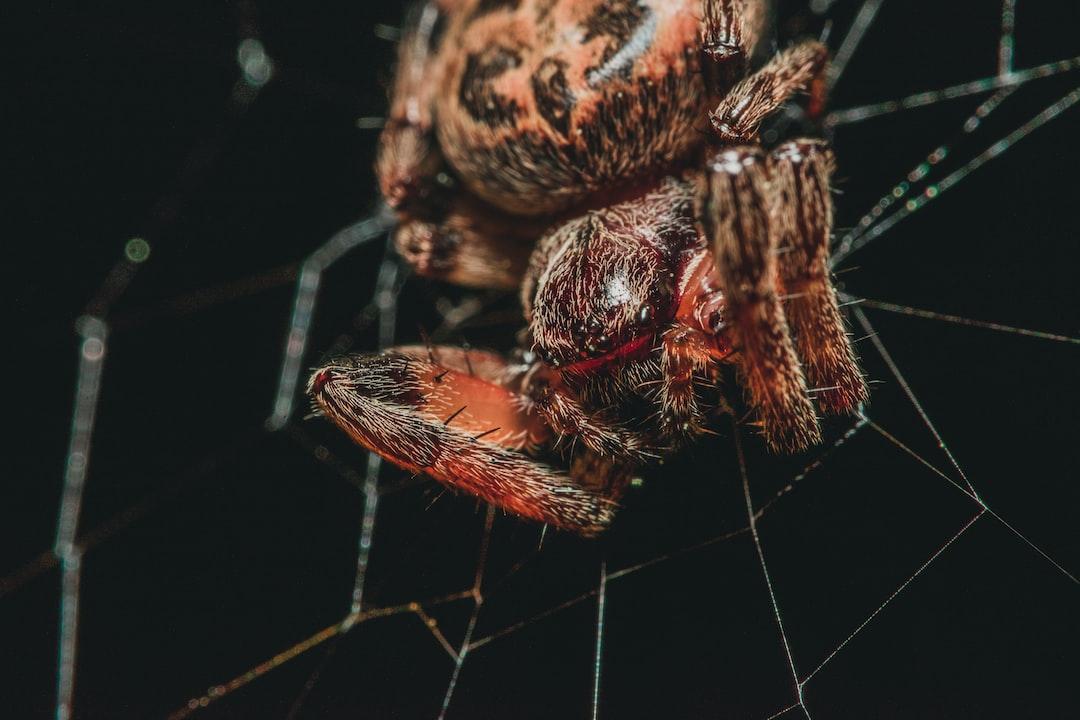 Building a fast modern dark web crawler
