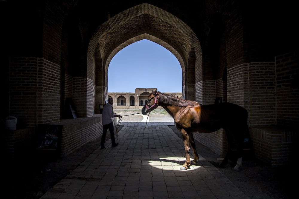 man pulling horse inside arch hall
