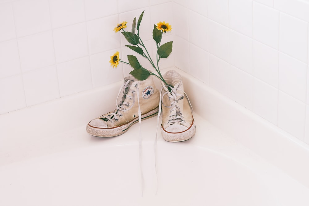 blooming yellow sunflower on white Converse high-top sneakers near white wall tiles
