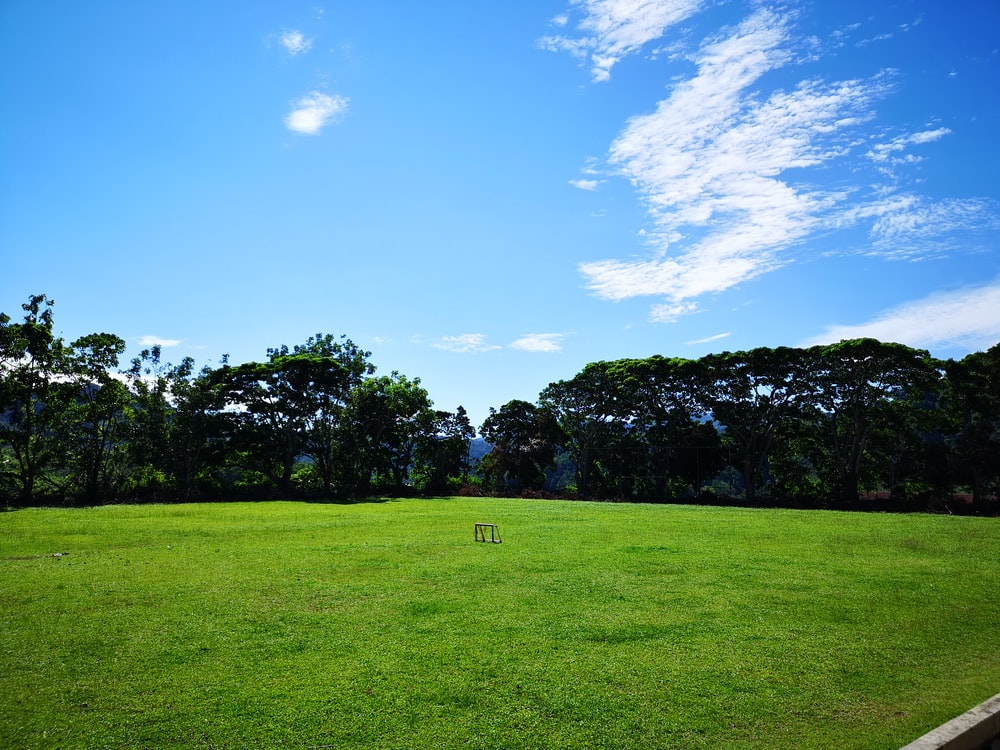 green field surrounded with tall and green trees under blue and white skies