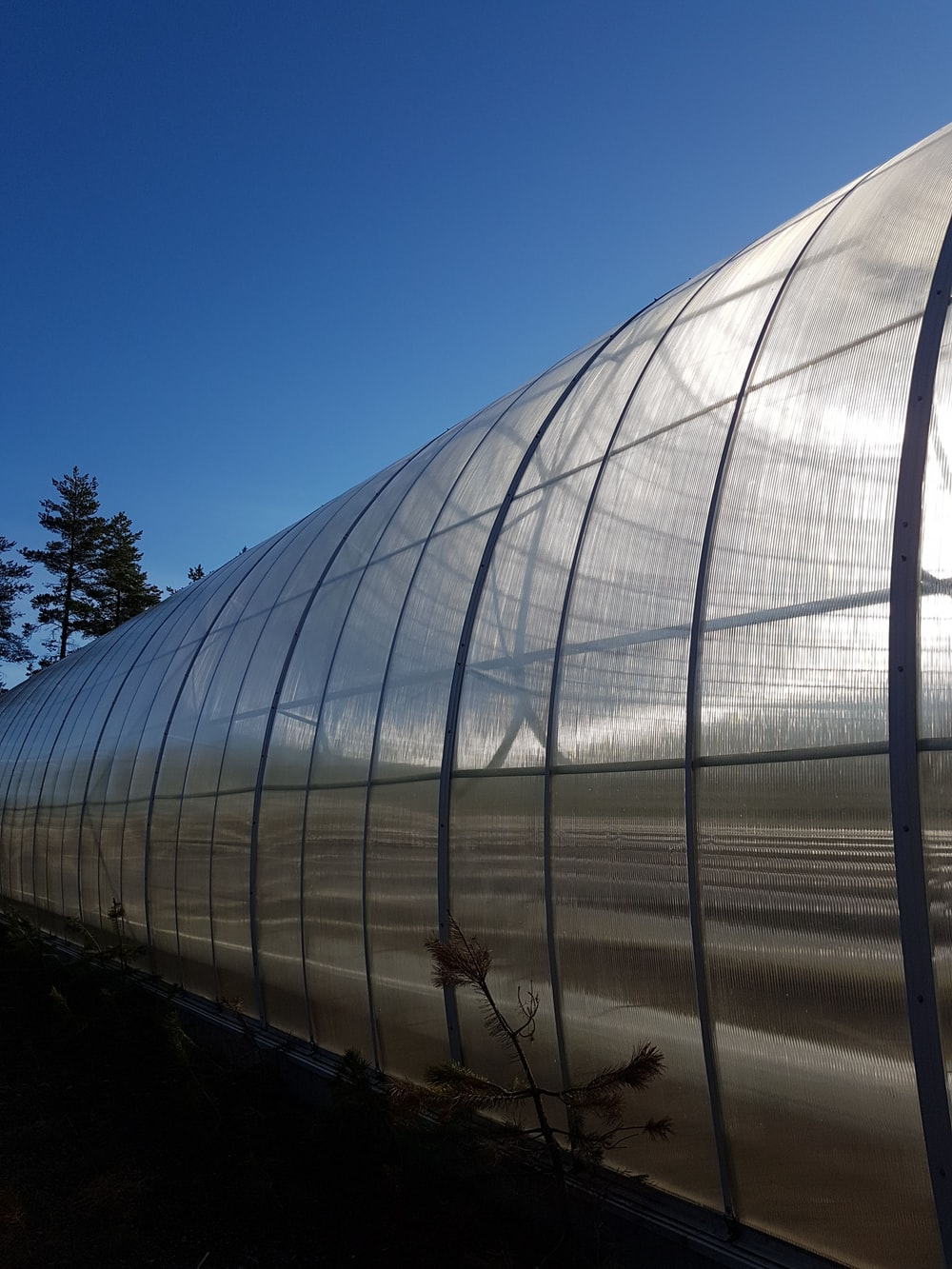greenhouse under clear blue sky