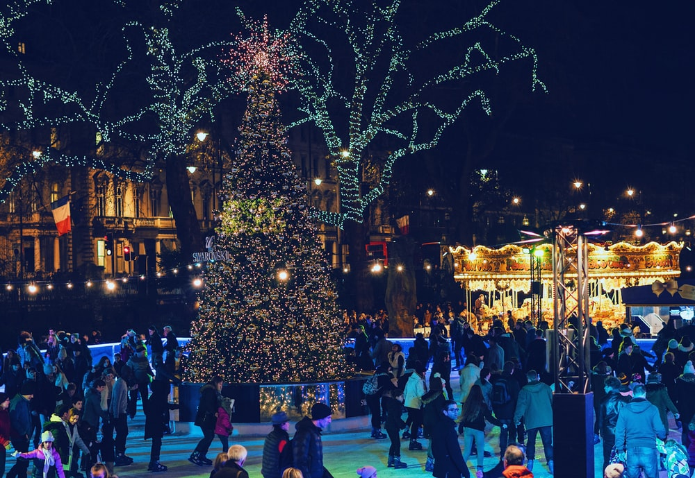 people near Christmas tree at night