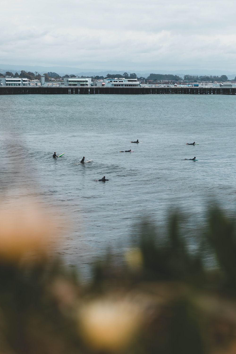 people surfing during daytime