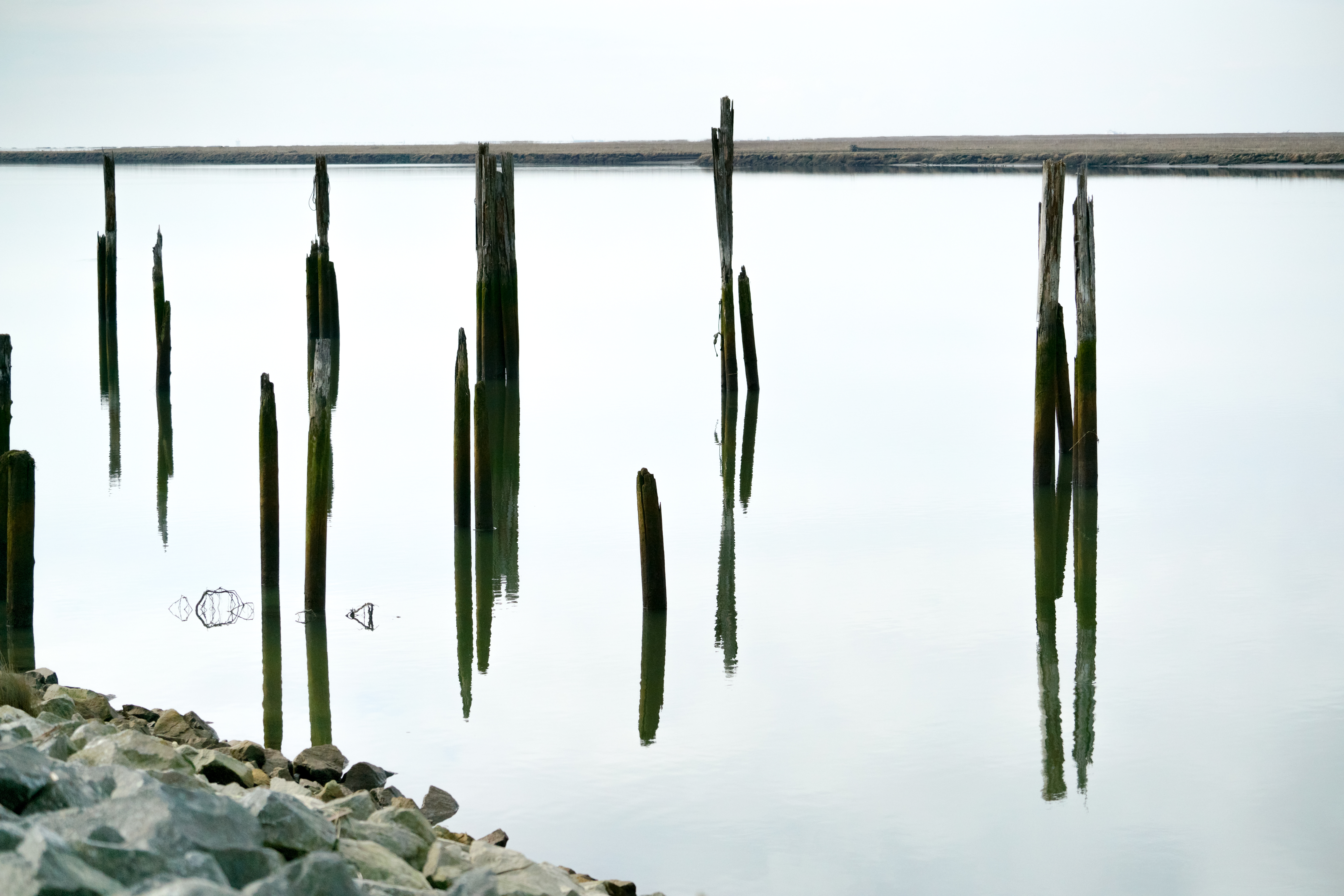Abandoned wooden pillars by the river