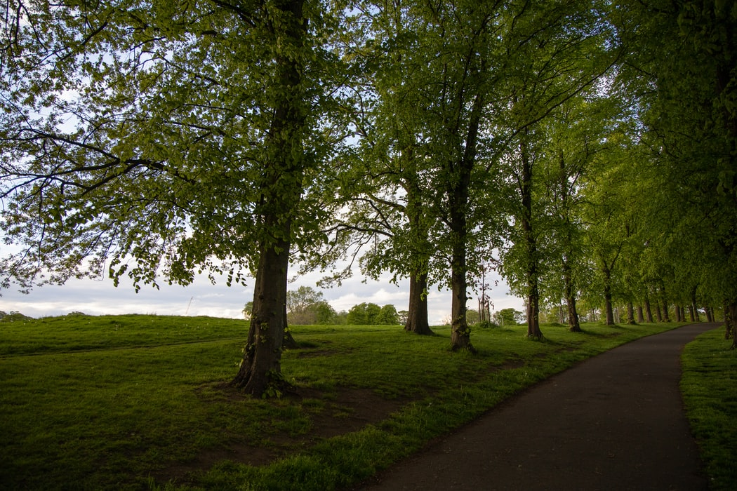 The inverleith park : Attractions to cover in Stockbridge