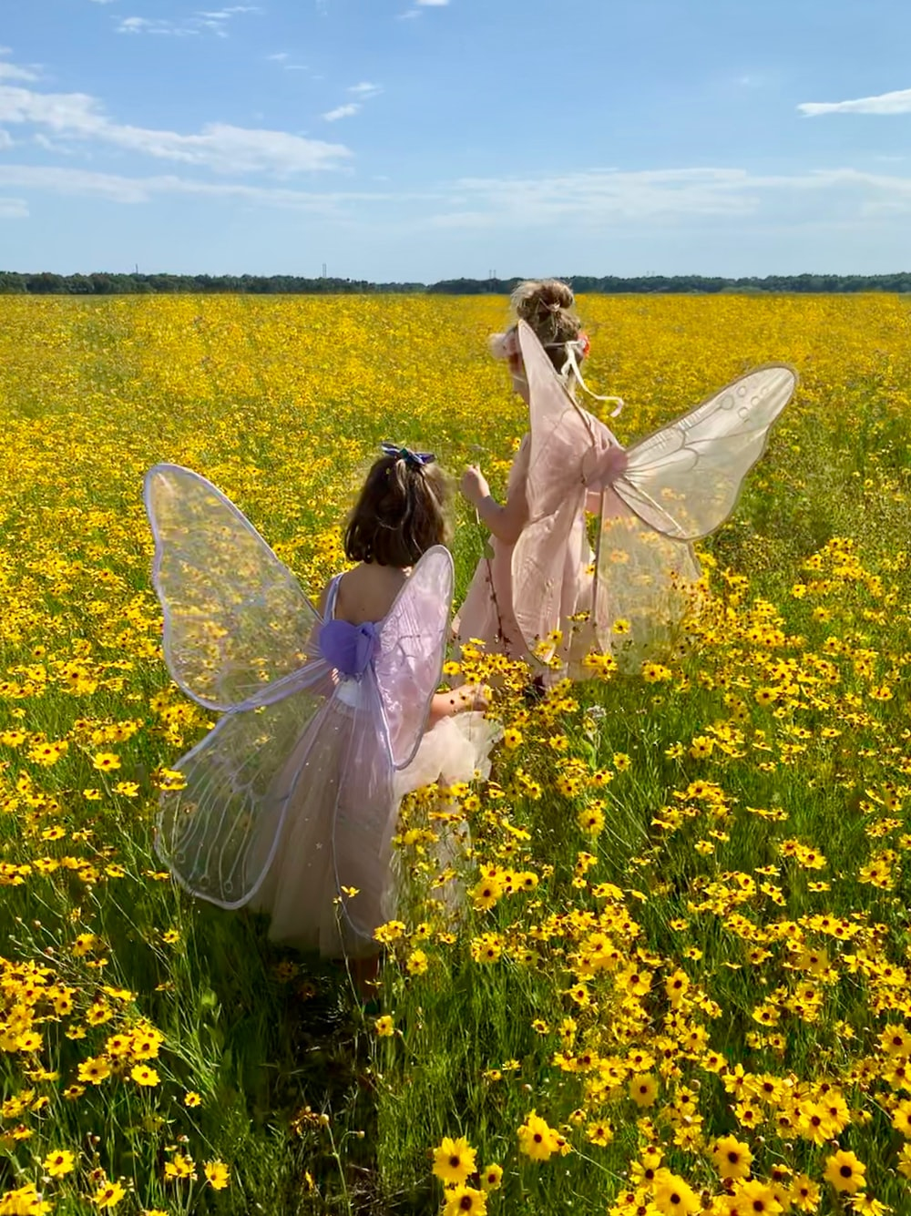 two girls wearing pink and purple dresses with wings