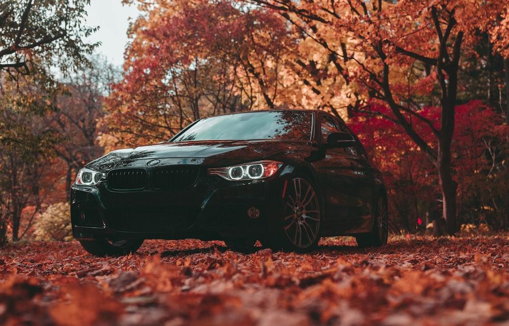 black BMW vehicle