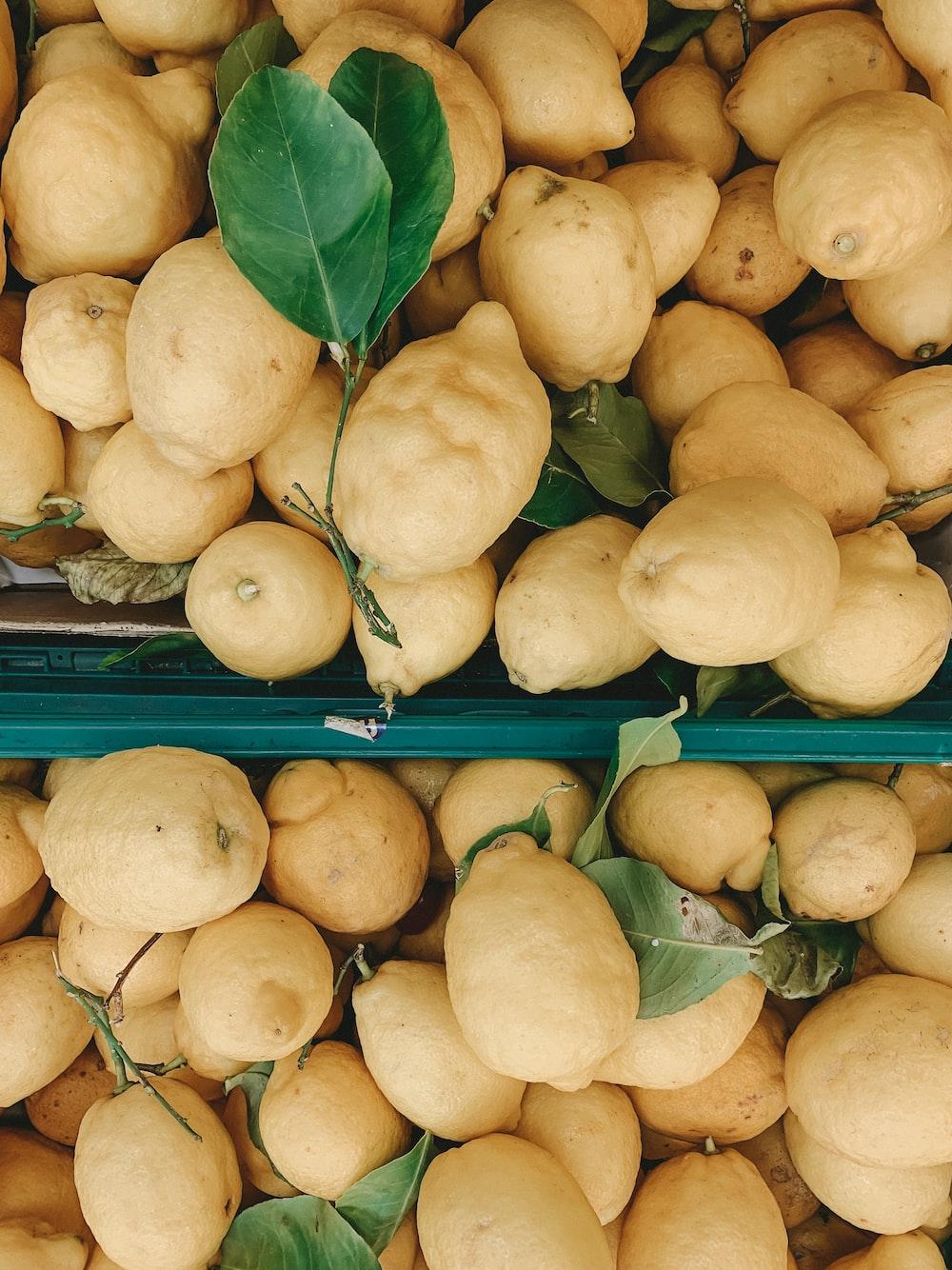 close-up photo of yellow fruits