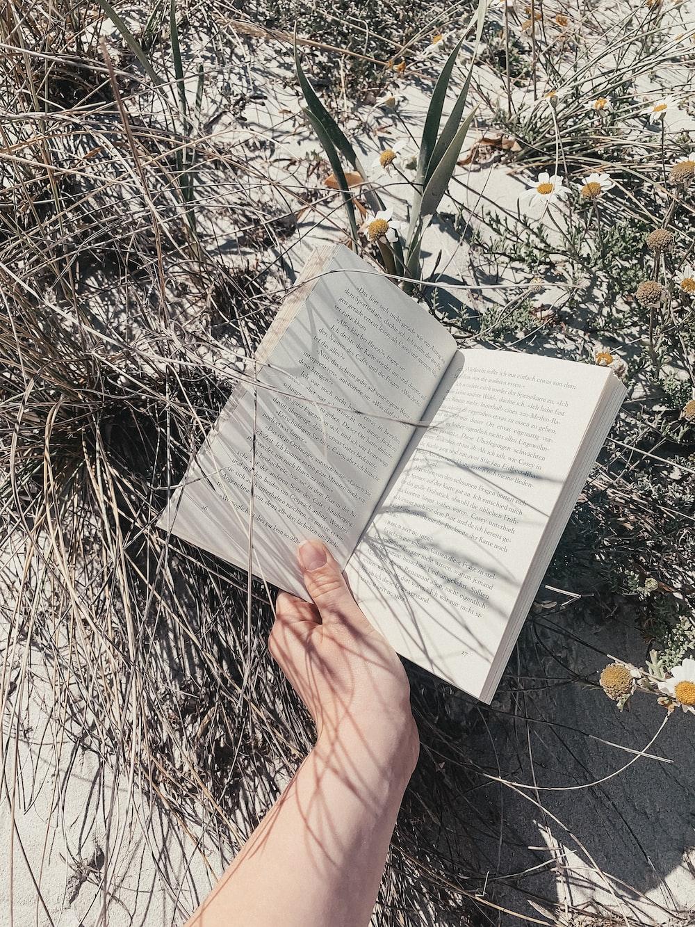 open book near green plant