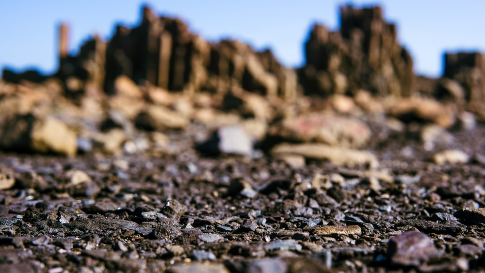 selective focus photography of stones near cliff during daytime