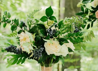 white rose with blueberries