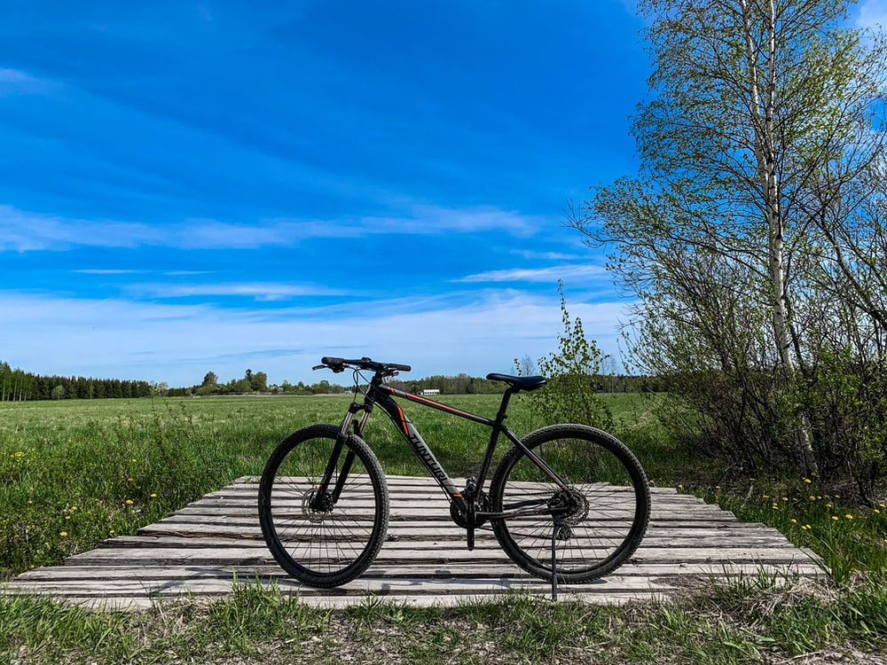 black bicycle parked near trees