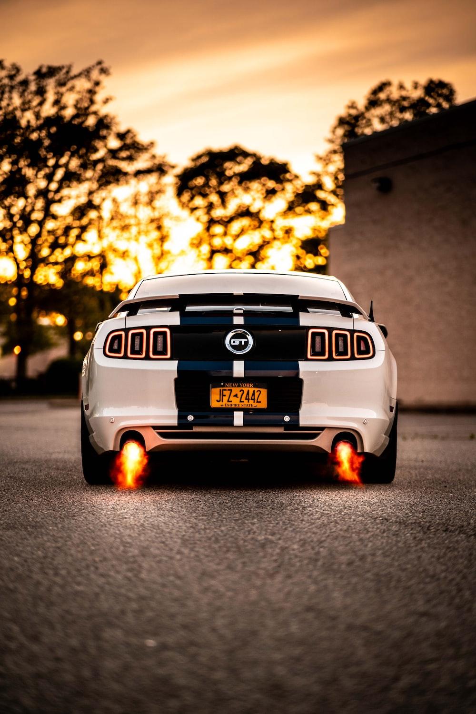 Mustang Wallpapers Free Hd Download 500 Hq Unsplash