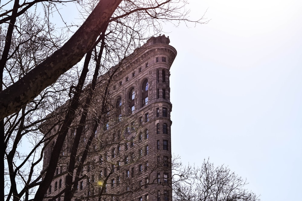 brown tall corner building