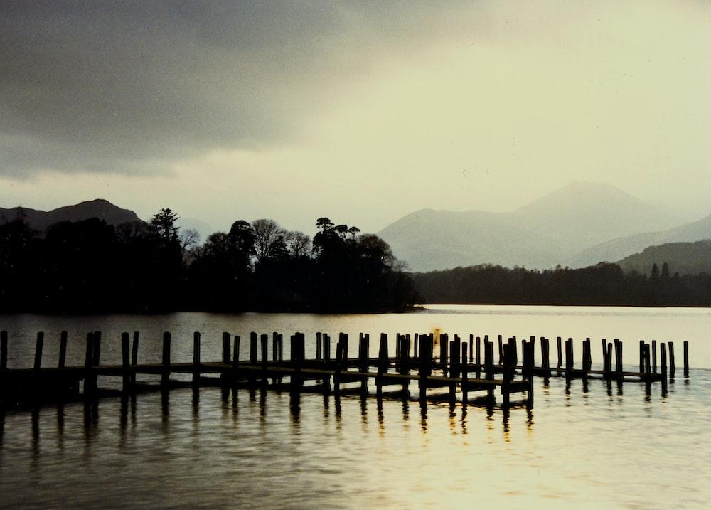 wooden dock in body of water