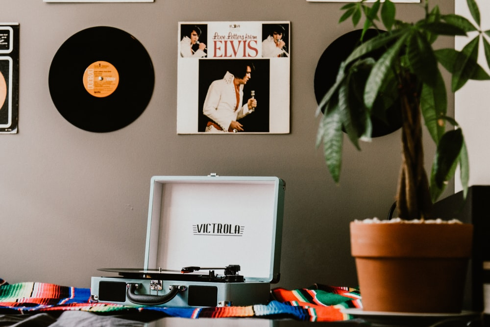 Elvis Presley vinyl sleeve