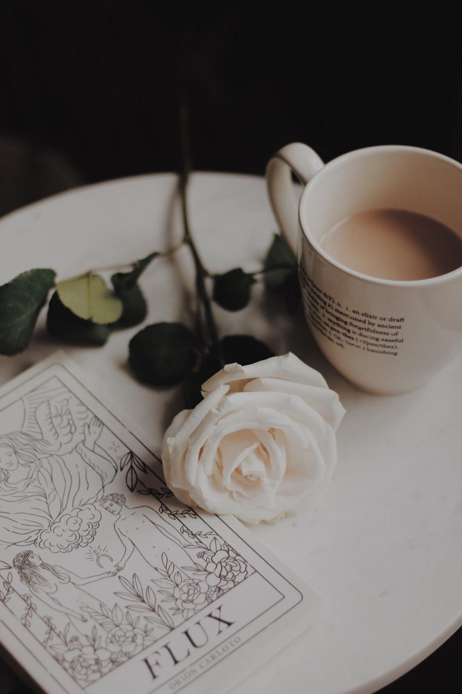 white rose flower beside white mug