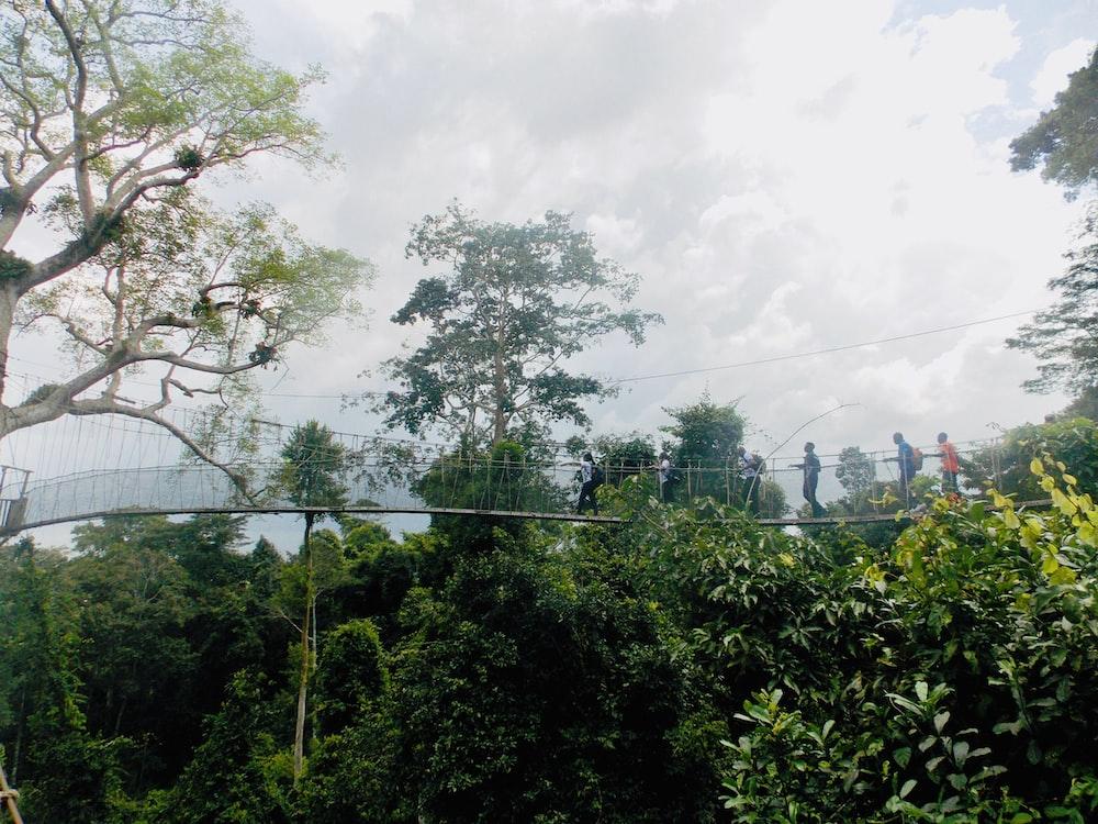 six persons walking on footbridge