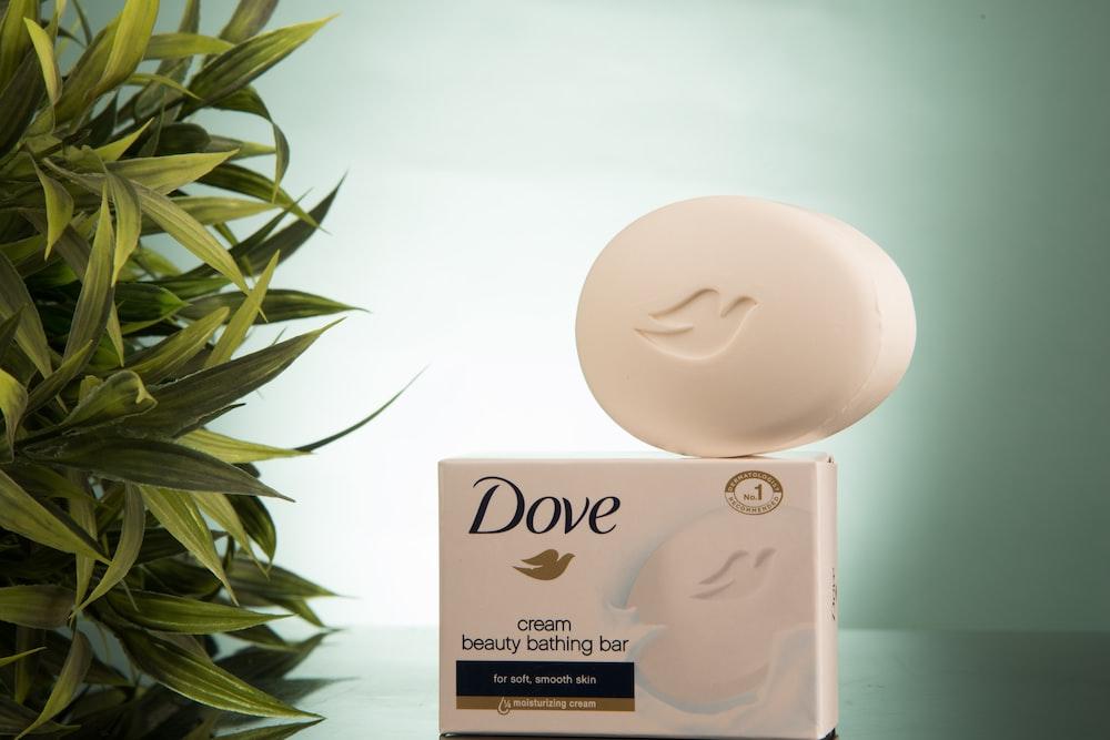 white Dove soup beside plant