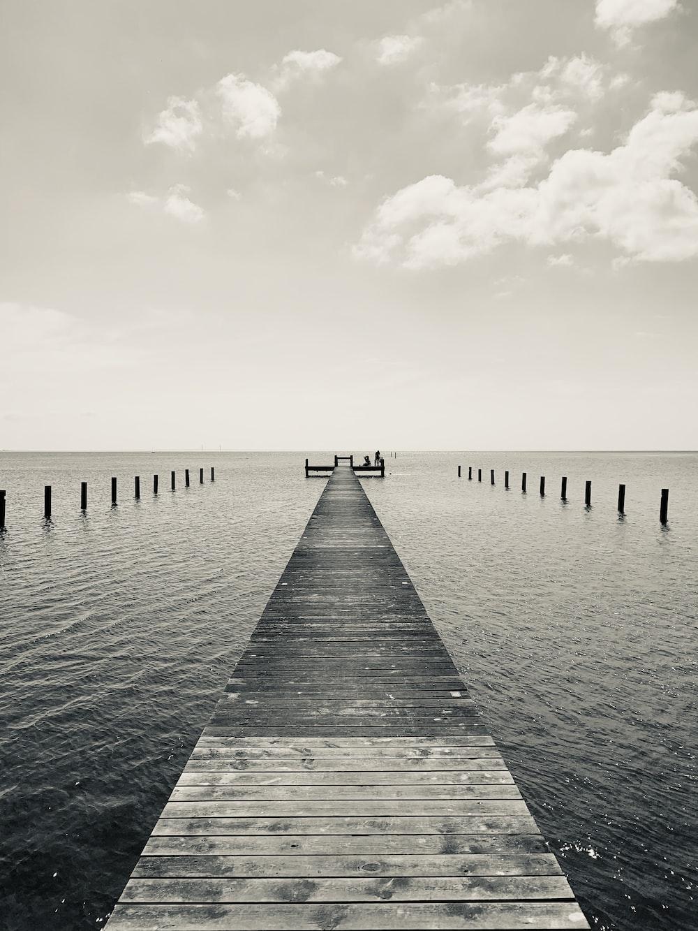 greyscale photography of dock