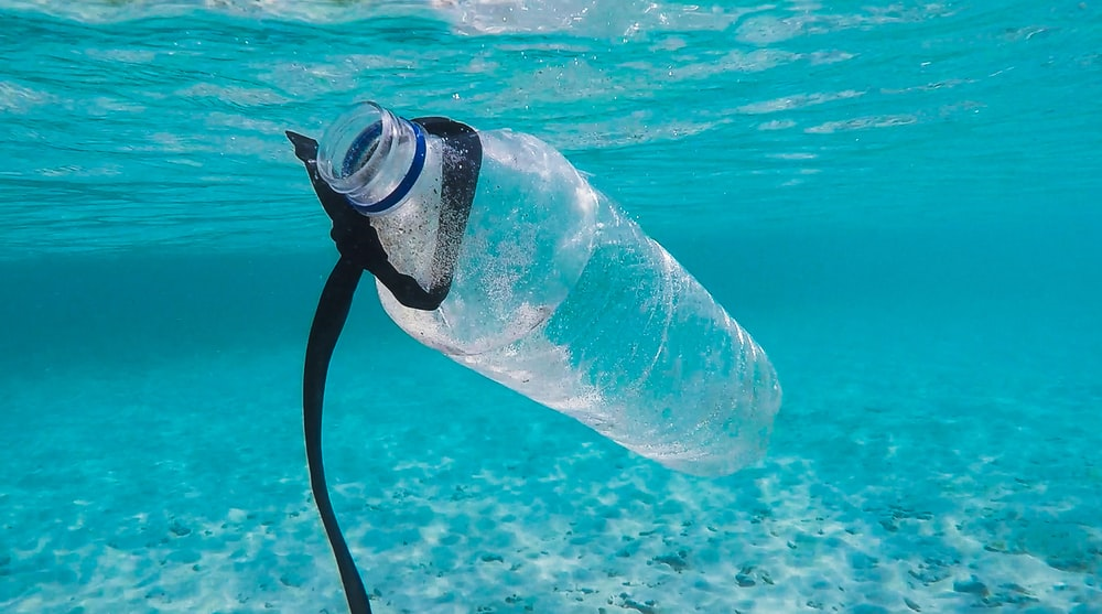 water bottle in water
