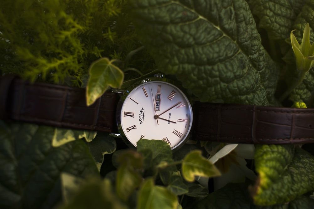round silver-colored and white analog watch with brown leather strap near green leaves
