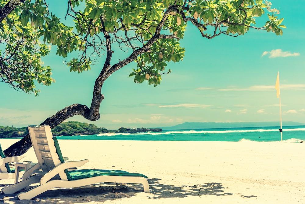 empty sunlounger at the beach