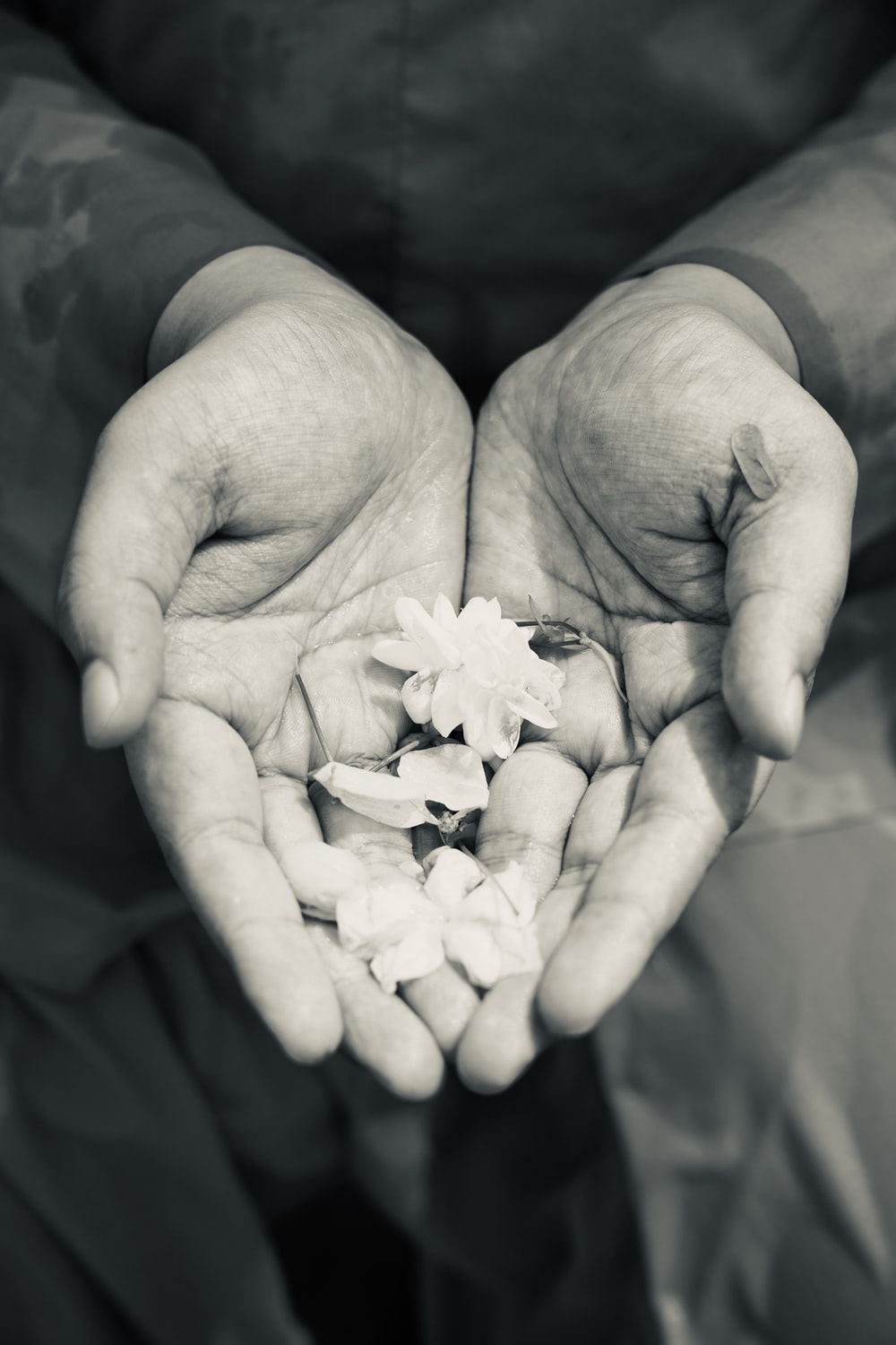 human hands with flowers