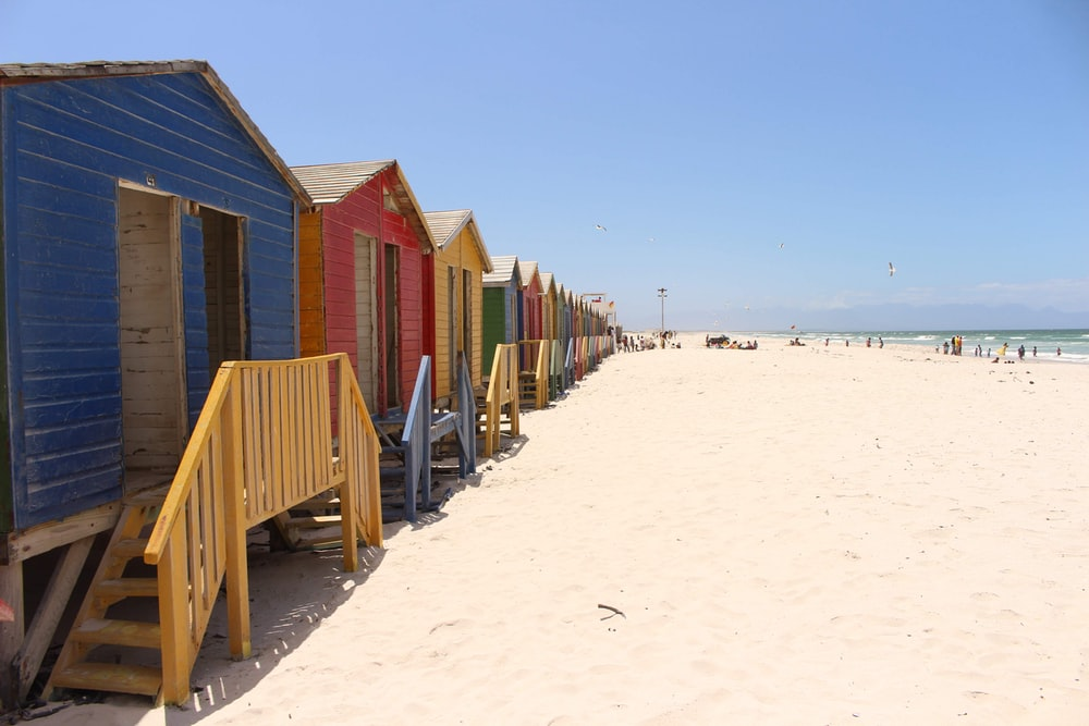 seashore with houses