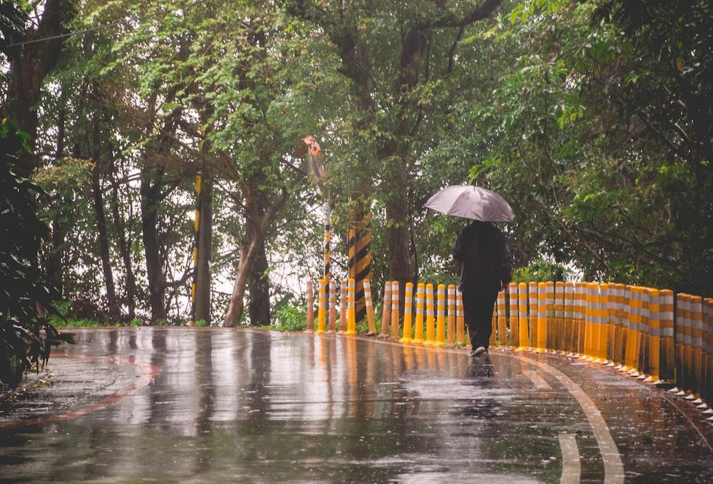 rain in park