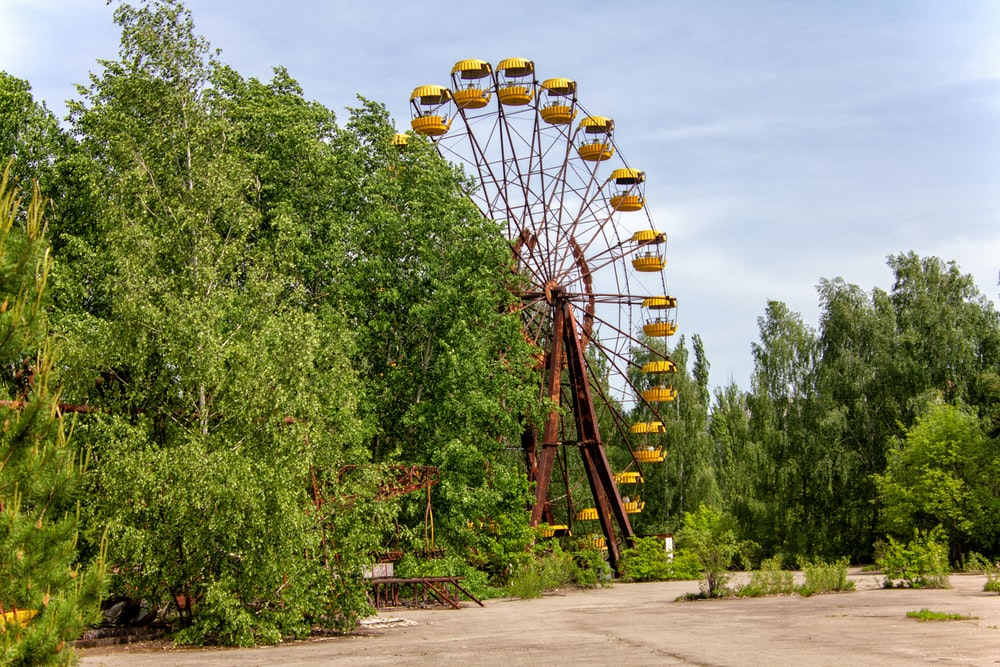 orange ferris wheel surrounded by trees