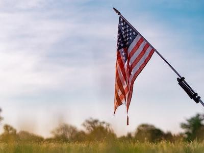 usa flag flag day zoom background
