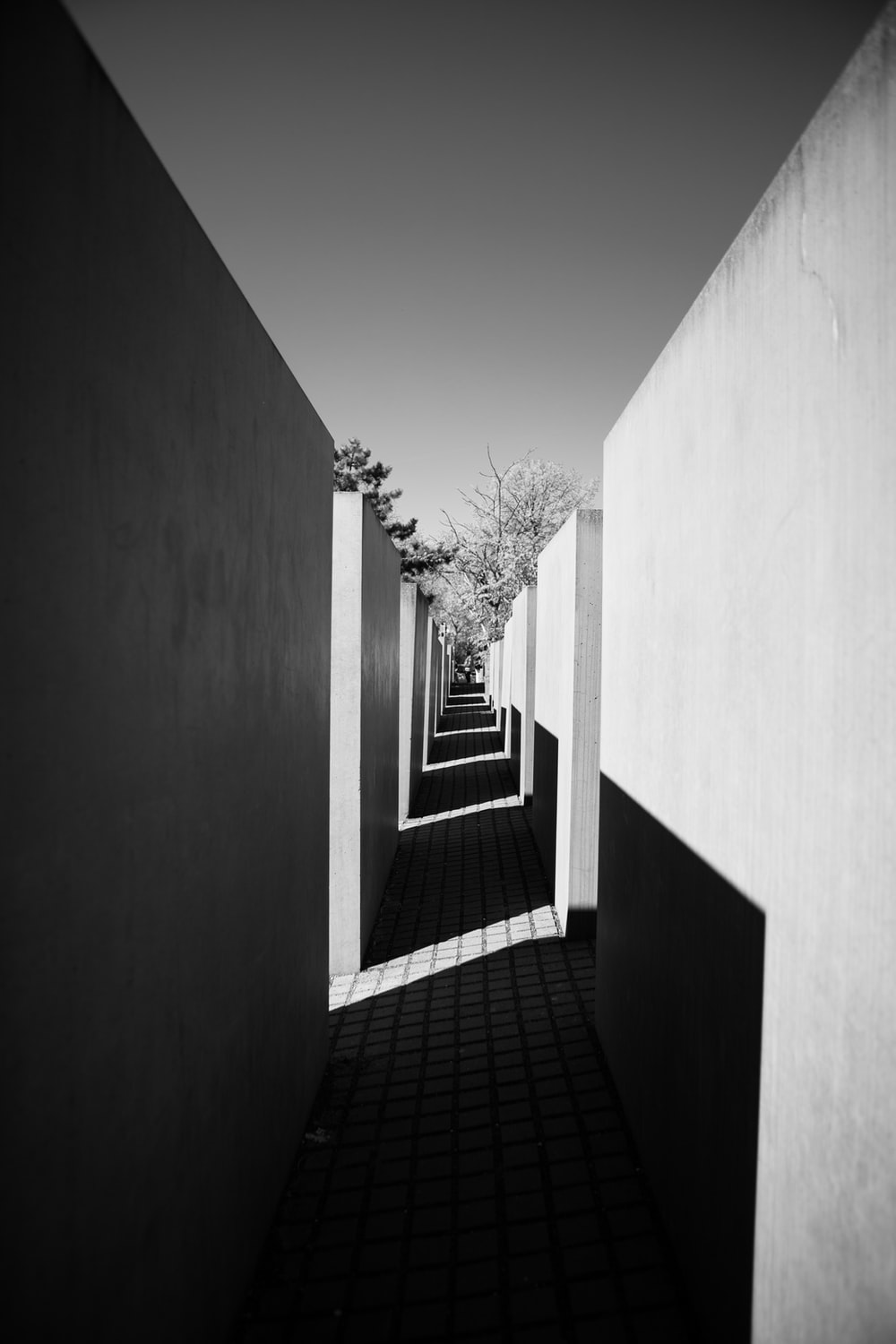 grayscale photography of alley
