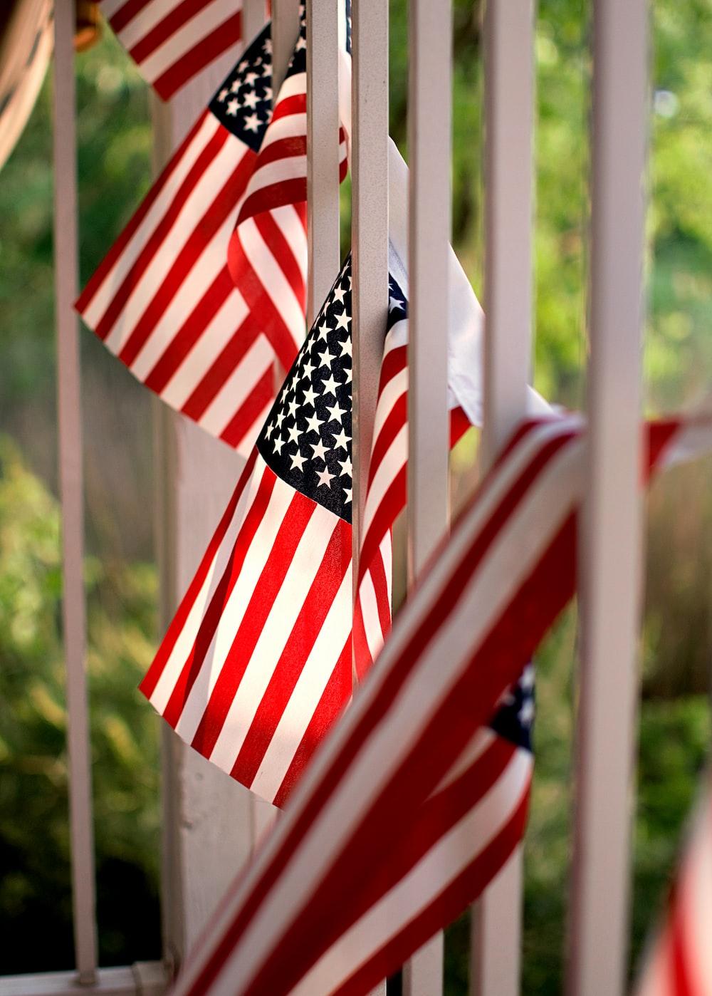 USA flag lot