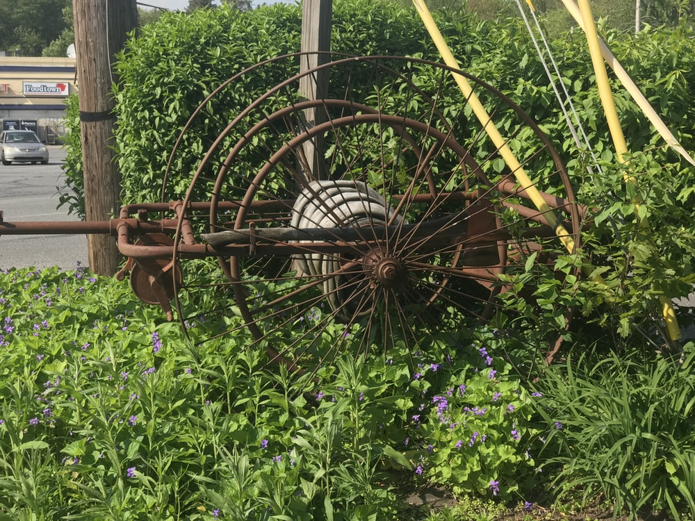 brown metal wheel on plants