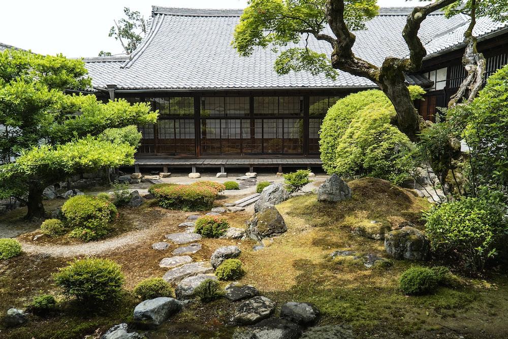 Authentic Japanese Landscape Design Elements You Should Know