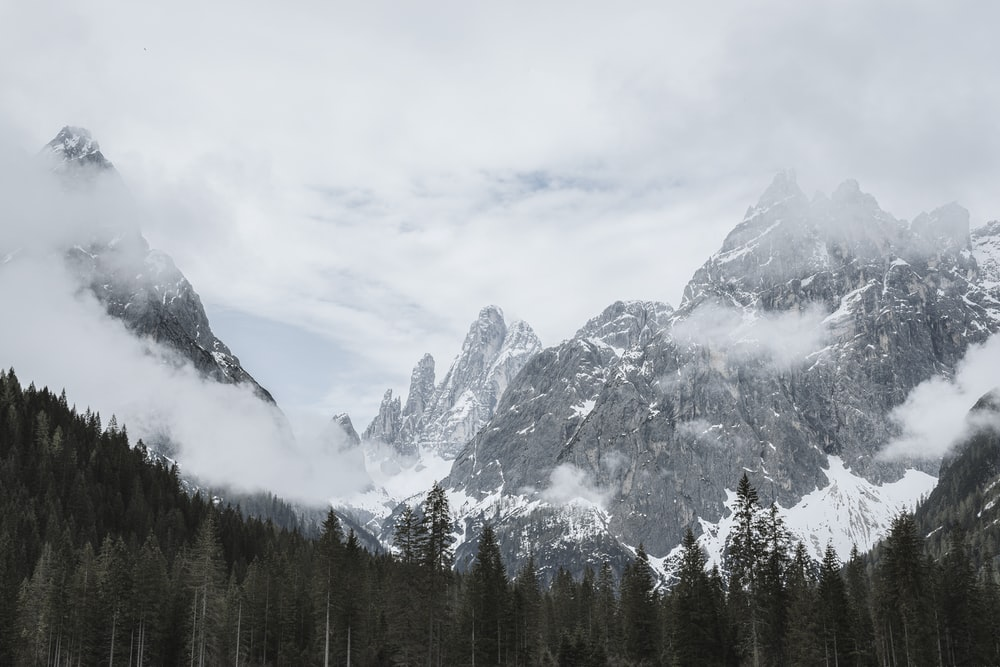 green pine trees near mountain filled with snow